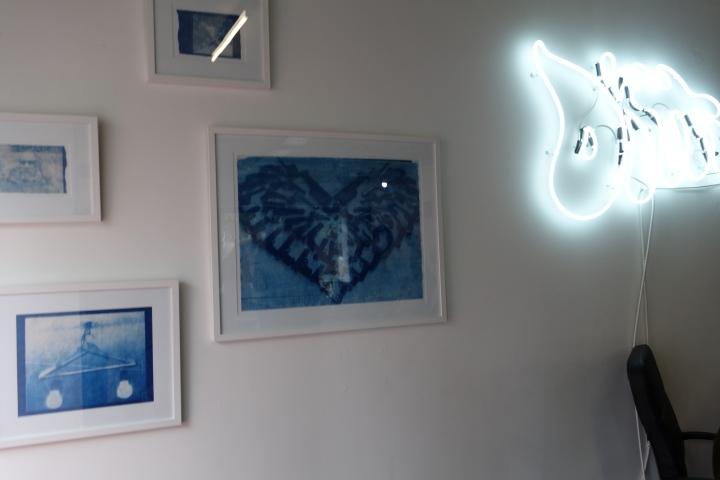 Thomas Mailaender cyanotypes